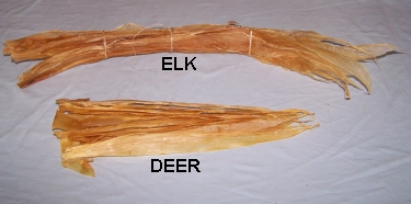 Sinew, Real Deer or Elk